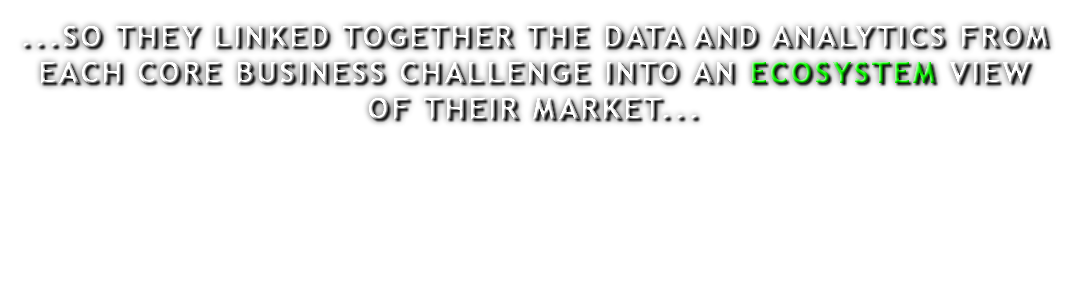 ...SO THEY LINKED TOGETHER THE DATA AND ANALYTICS FROM EACH CORE BUSINESS CHALLENGE INTO AN ECOSYSTEM VIEW OF THEIR MARKET...